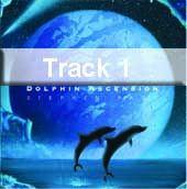 Track 1 - Dolphin Ascenion