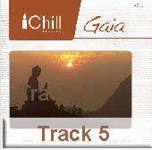 Track 5 - Gaia Journey