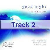 Track 2 - Into the Night