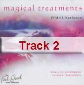 Track 2 - Make a Wish