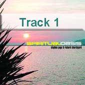 Track 1 - Drifting