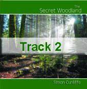 Track 2 - Hidden Path