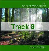 Track 8 - Emerald Aura