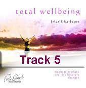 Track 5 - Waterfall